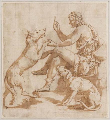 giuilio romano herder wolf hond
